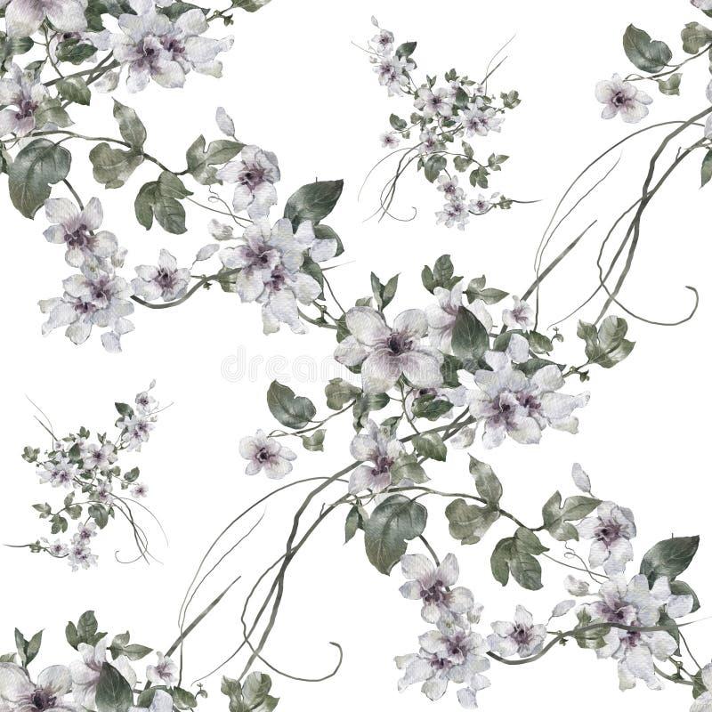 Pintura da aquarela da folha e das flores, teste padrão sem emenda ilustração stock