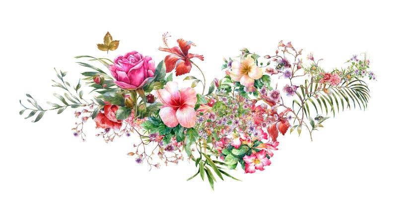 Pintura da aquarela das folhas e da flor, no branco ilustração royalty free