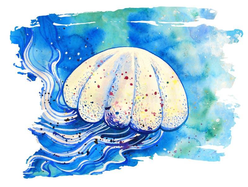 Pintura da aquarela das medusas ilustração do vetor