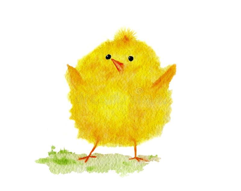 Pintura da aquarela de um pintainho amarelo pequeno bonito da Páscoa ilustração royalty free