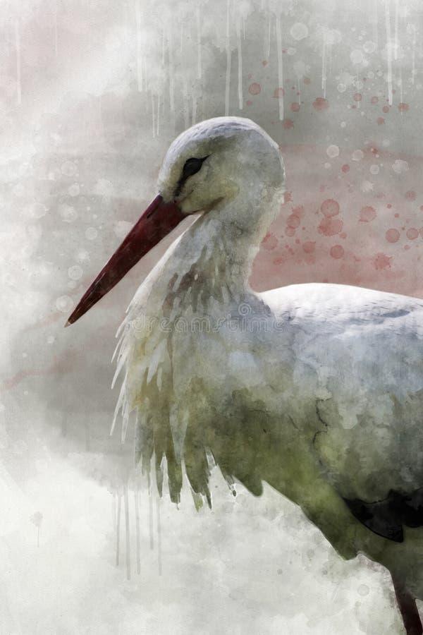 Pintura da aquarela de uma cegonha branca Ilustra??o do p?ssaro ilustração stock