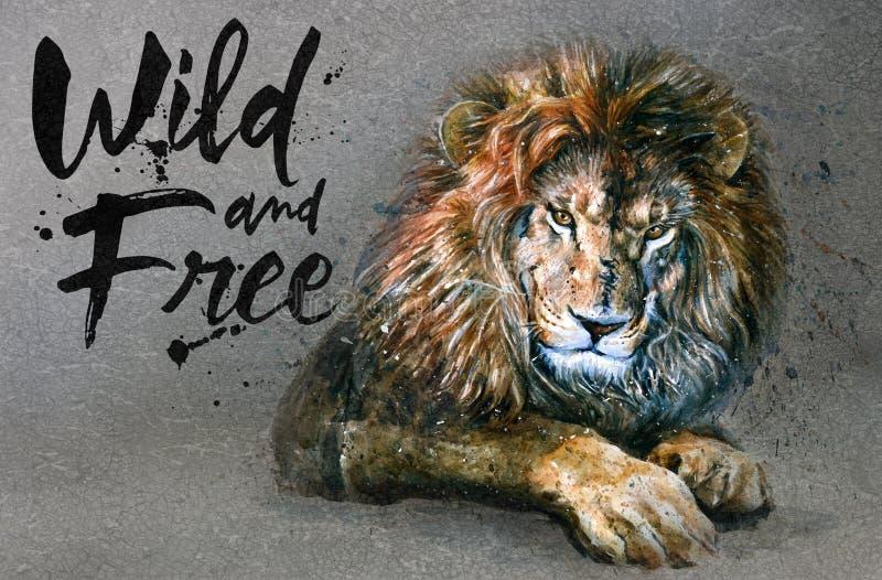 Pintura da aquarela do leão com o rei predador dos animais do fundo dos animais selvagens & livres ilustração royalty free