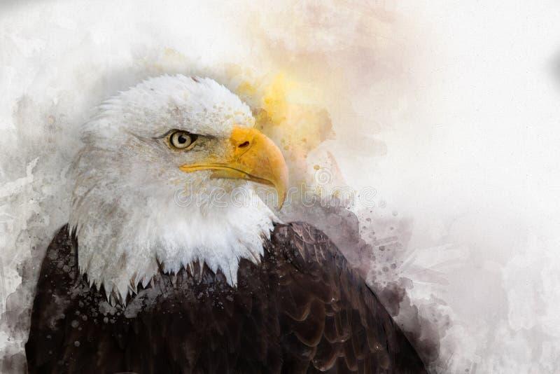 Pintura da aquarela do pássaro de Eagle América ilustração royalty free