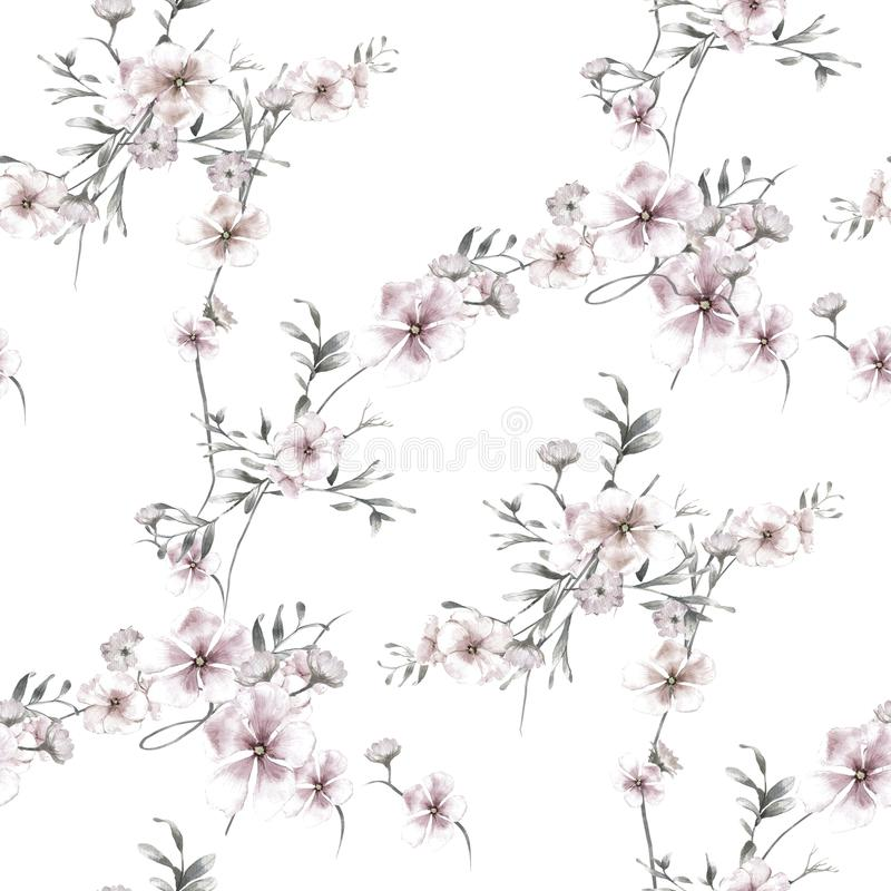 Pintura da aquarela da folha e das flores, teste padrão sem emenda no branco ilustração royalty free