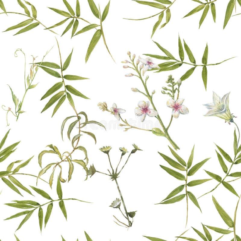 Pintura da aquarela da folha e das flores, teste padr?o sem emenda no branco foto de stock