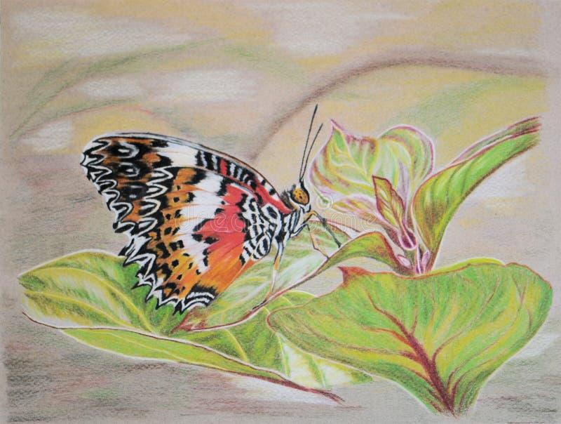 Pintura da borboleta do Lacewing (lado de baixo) imagem de stock royalty free