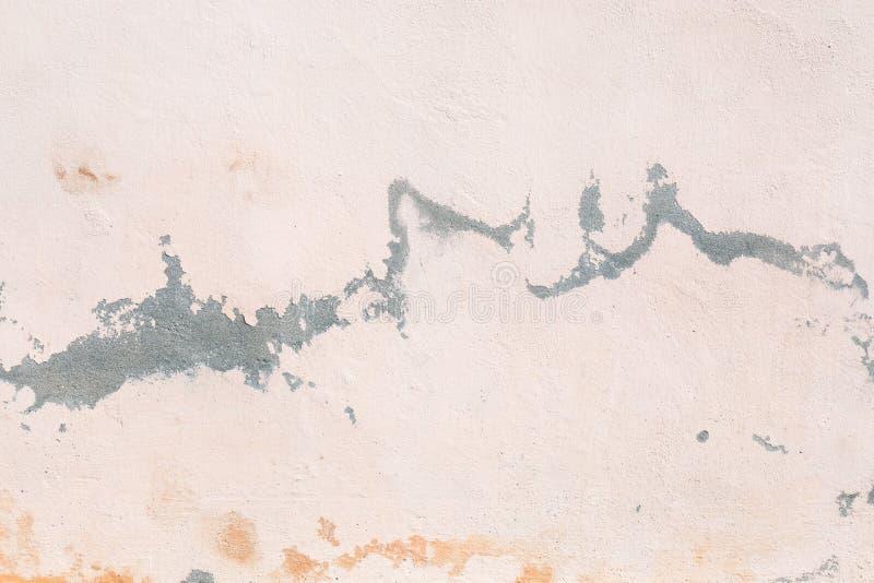 Pintura da casca no muro de cimento, fim acima fotografia de stock