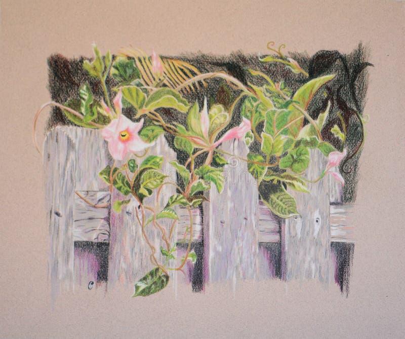Pintura das flores e das folhas na cerca de madeira imagem de stock royalty free