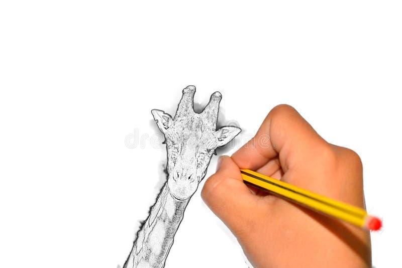 Pintura de jirafa con lápiz en papel su texto aquí stock de ilustración