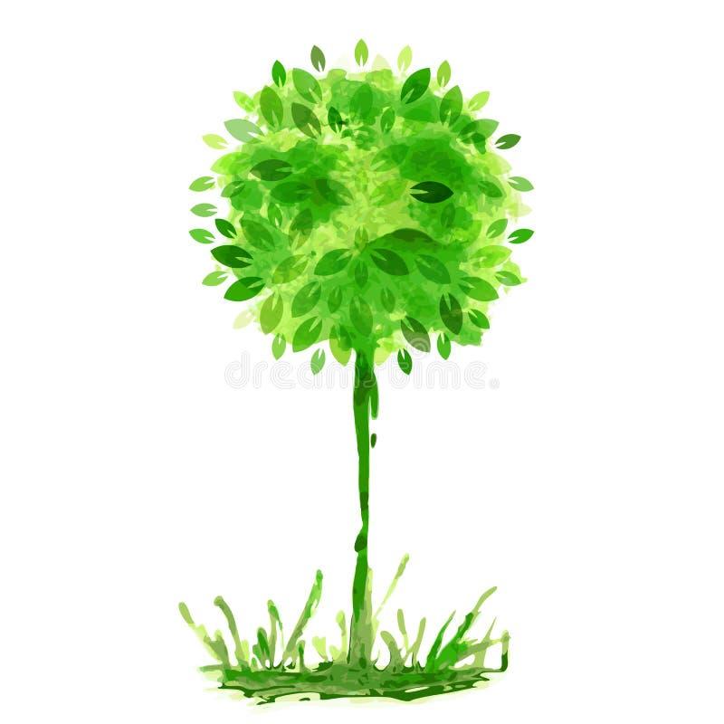 Pintura de la acuarela, árbol verde en hierba Vagos del ejemplo del vector stock de ilustración