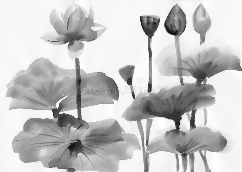 Pintura de la acuarela de las flores de loto stock de ilustración