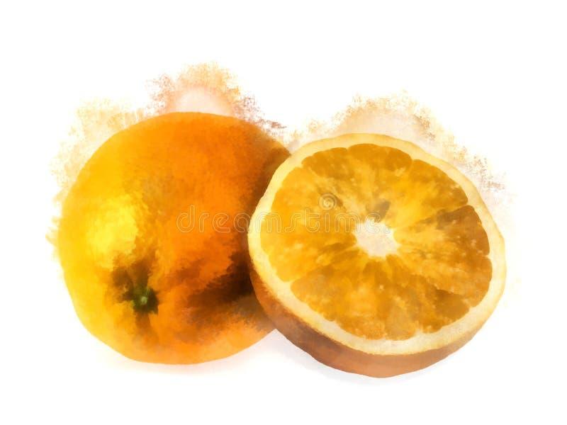Pintura de la acuarela de las naranjas fotografía de archivo