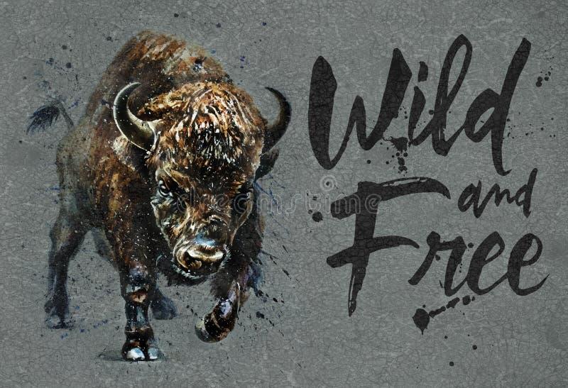 Pintura de la acuarela del búfalo con el fondo, impresión salvaje y libre del bisonte de la fauna para la camiseta stock de ilustración