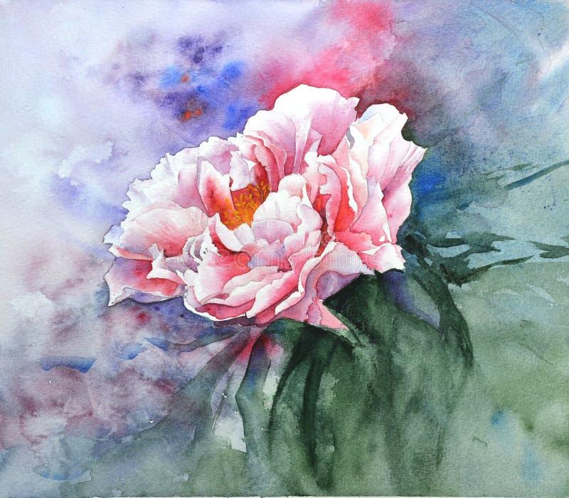 Pintura de la acuarela Figura peonía Imagen grande Floral hermoso ilustración del vector