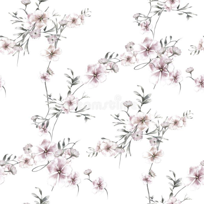 Pintura de la acuarela de la hoja y de las flores, modelo inconsútil en blanco libre illustration