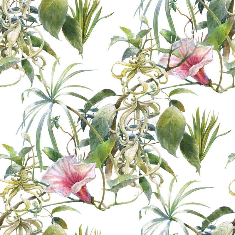 Pintura de la acuarela de la hoja y de las flores, modelo inconsútil en el fondo blanco ilustración del vector