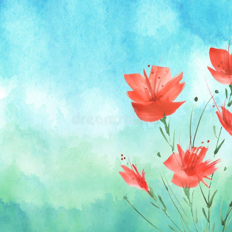 Pintura de la acuarela Un ramo de flores de las amapolas rojas, wildflowers Ejemplo floral de la acuarela exhausta de la mano, lo ilustración del vector