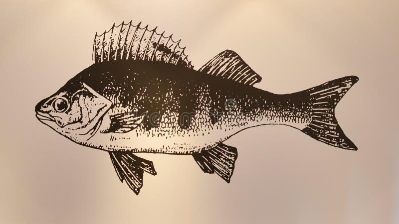 Pintura de los pescados en la pared imagenes de archivo