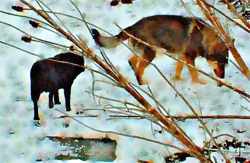Pintura del Watercolour de dos perros caseros en la nieve ilustración del vector