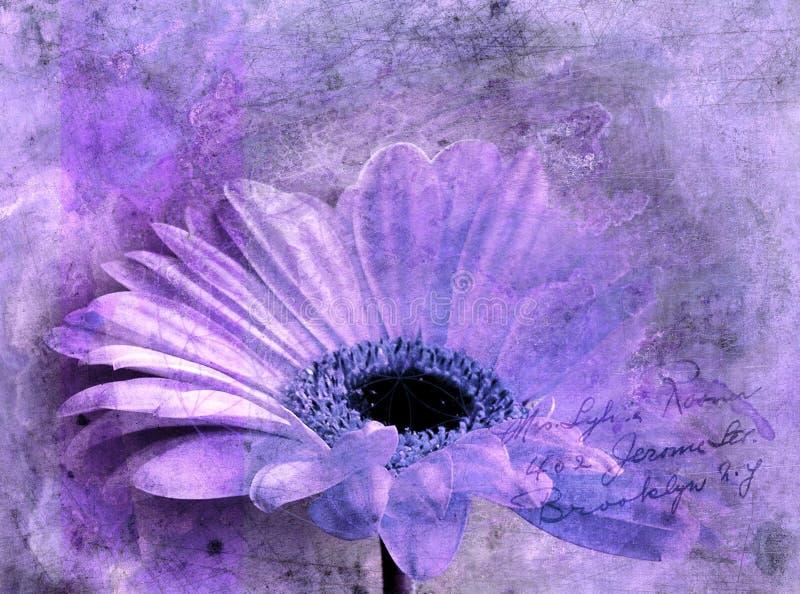 Pintura digital da flor violeta do astra, abstrata imagem de stock royalty free