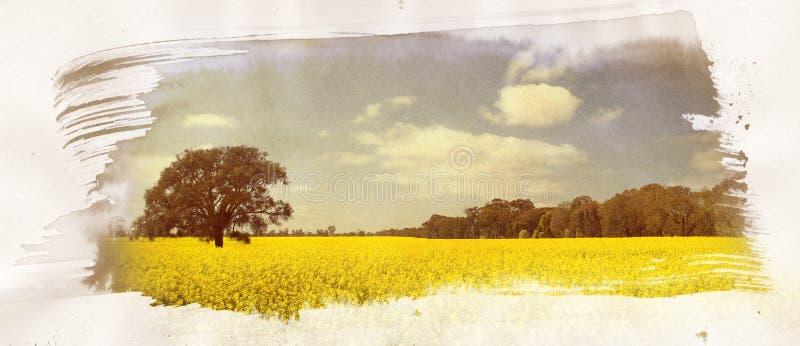 Pintura do campo de Canola ilustração royalty free