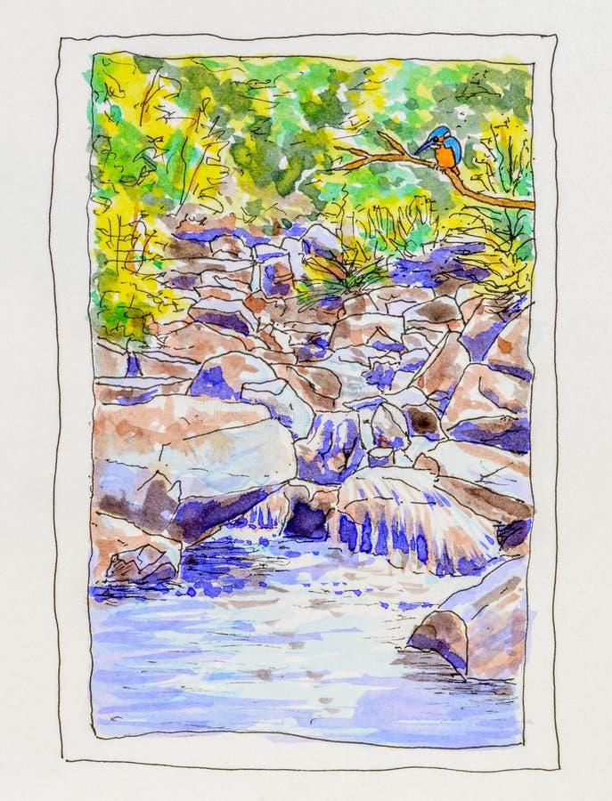 Pintura do martinho pescatore e do córrego rochoso ilustração royalty free