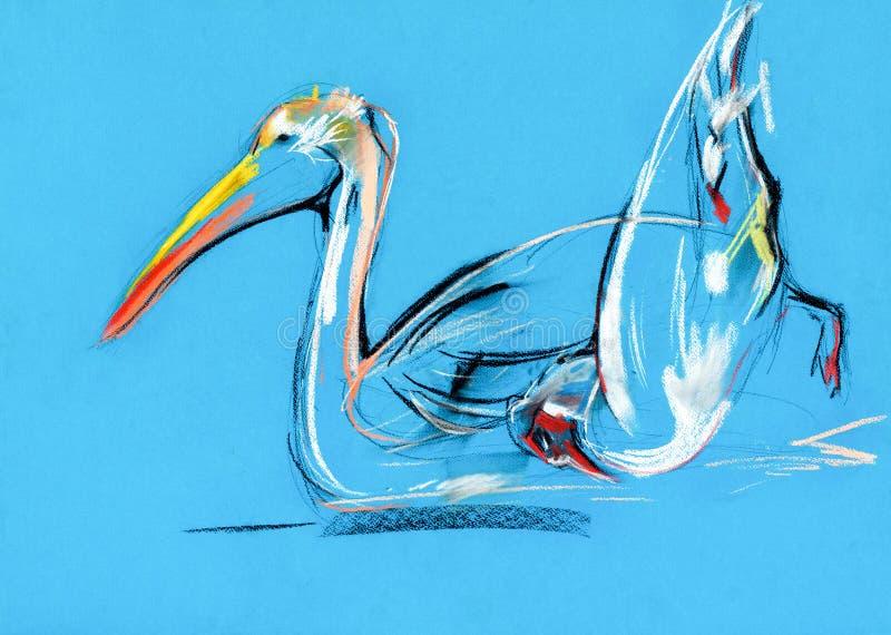 Pintura do pelicano ilustração royalty free