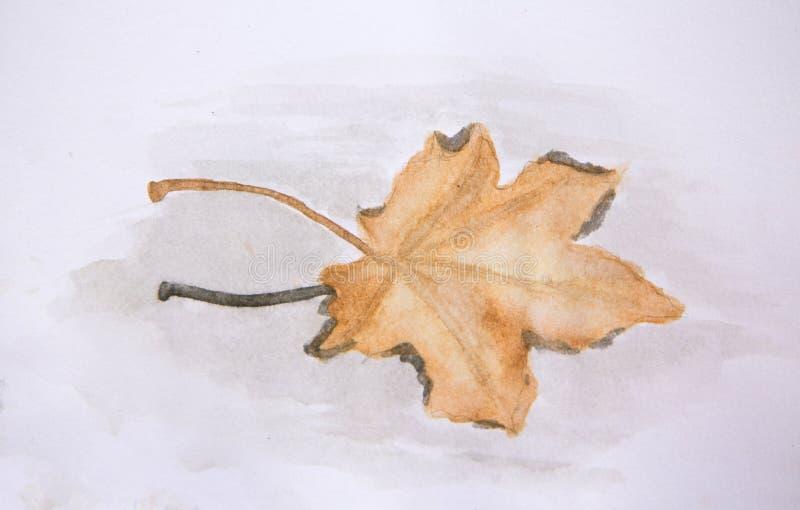 Pintura do Watercolour da folha de bordo na água ilustração royalty free