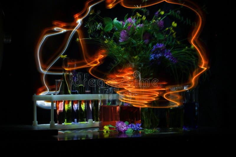 Pintura ligera con una linterna en la oscuridad en una exposición larga platos y flores químicos imágenes de archivo libres de regalías