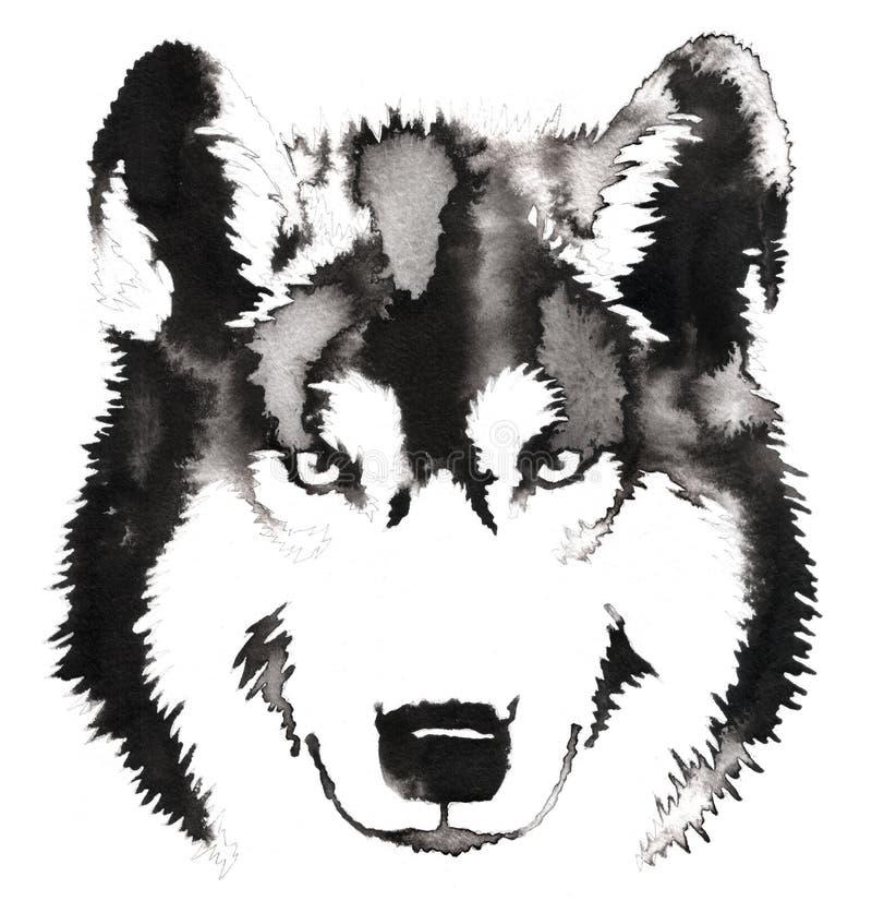 A pintura monocromática preto e branco com água e a tinta tiram a ilustração do lobo ilustração do vetor