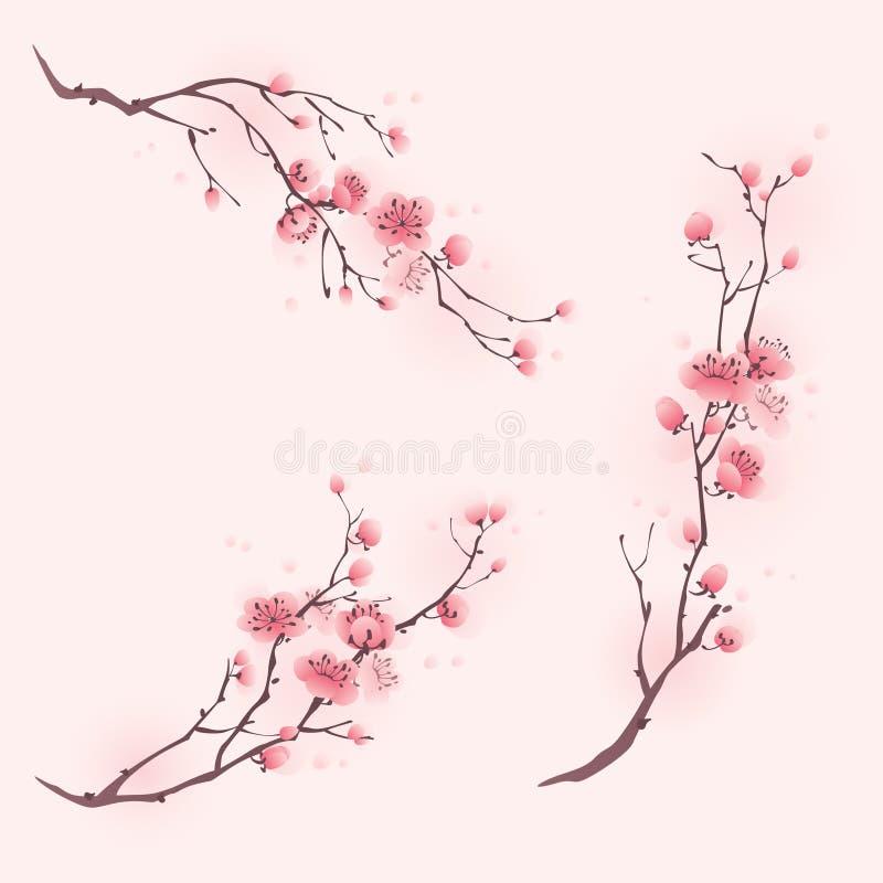 Pintura oriental del estilo, flor de cerezo en primavera ilustración del vector