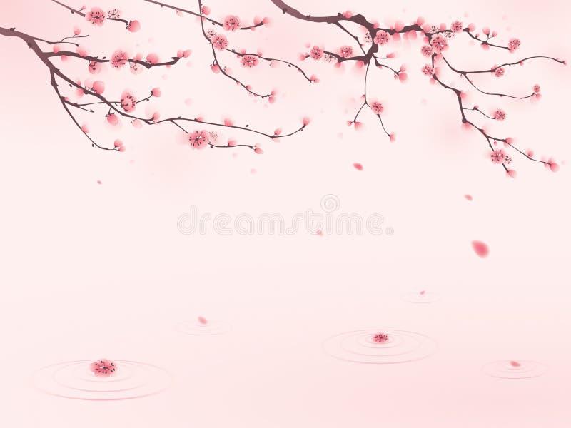 Pintura oriental do estilo, flor de cereja na mola ilustração royalty free