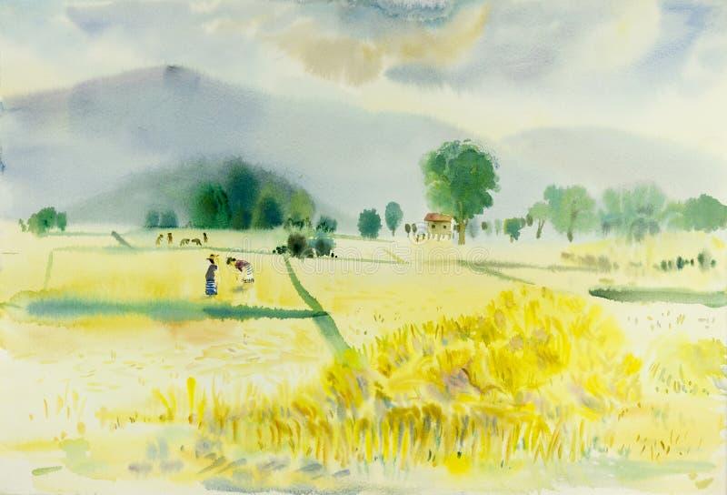 Pintura original colorida de campo del arroz en montaña stock de ilustración