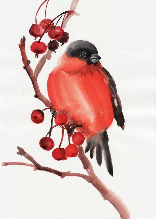 Download Bullfinch ilustração stock. Ilustração de artístico, preto - 29843754