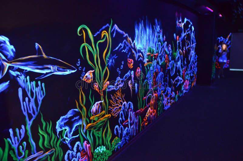 Pintura pintada con la pintura fluorescente en el aquapark de Sochi imagenes de archivo