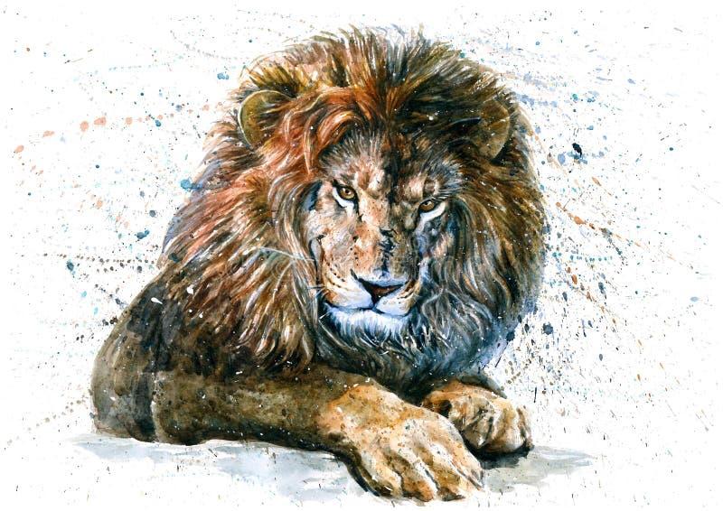 Pintura predadora dos animais selvagens dos animais da aquarela do leão ilustração stock