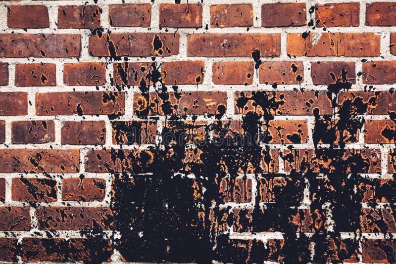 Pintura preta derramada por todo o lado na parede de tijolo vermelho fotografia de stock royalty free