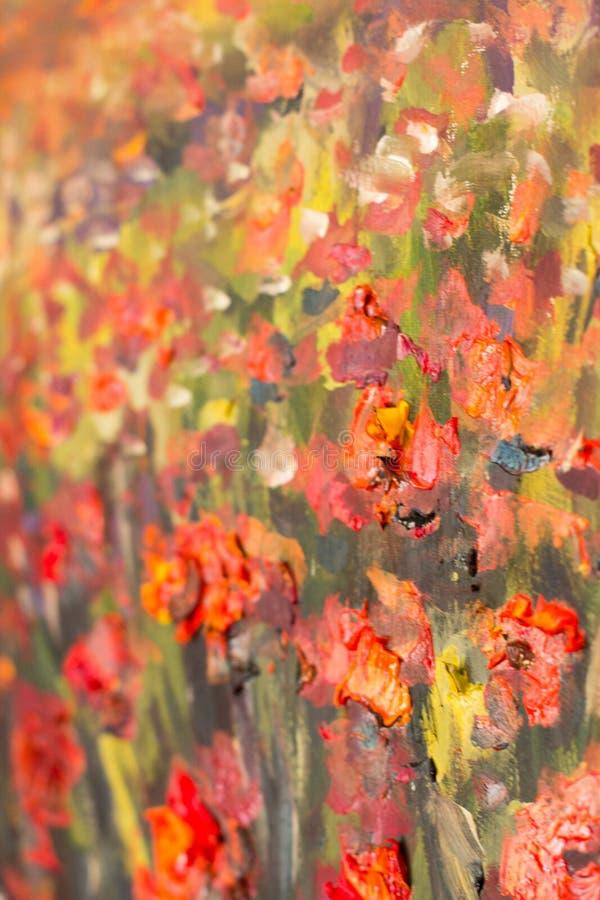 Pintura roja de las flores de las amapolas Fragmento ascendente cercano de la macro imagenes de archivo