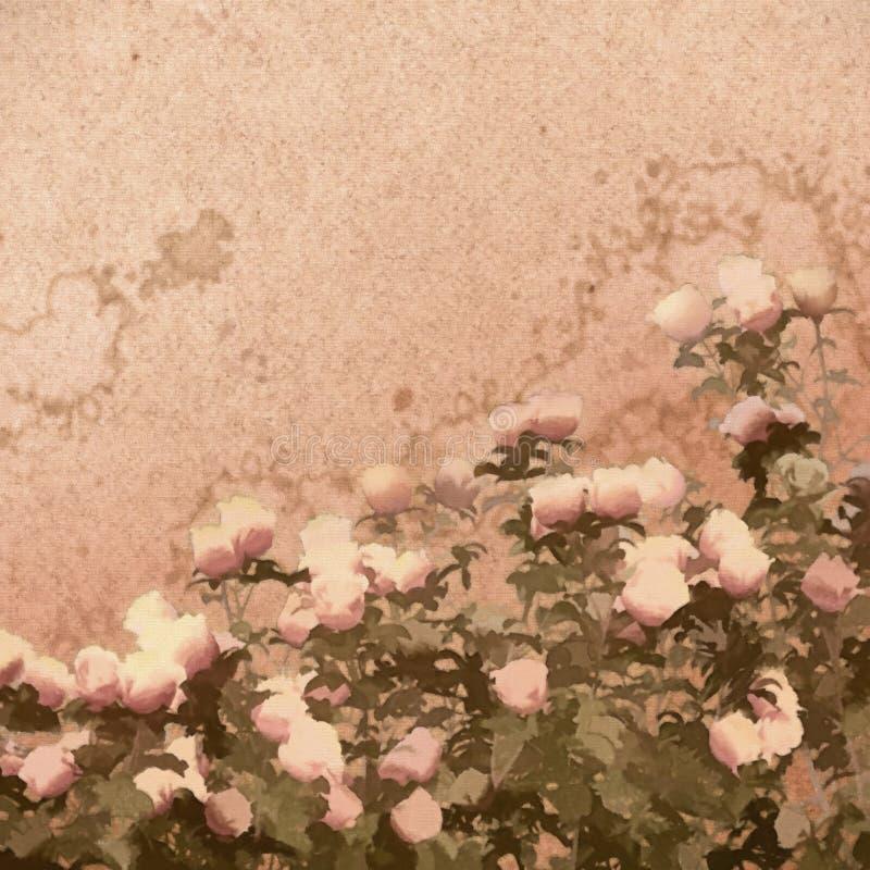 Pintura Rose Bush stock de ilustración