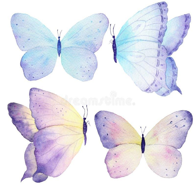 Pintura tirada da borboleta da aquarela mão ajustada Pode ser usado para cartões, convites do casamento, logotipo, t-shirt, sacos ilustração royalty free