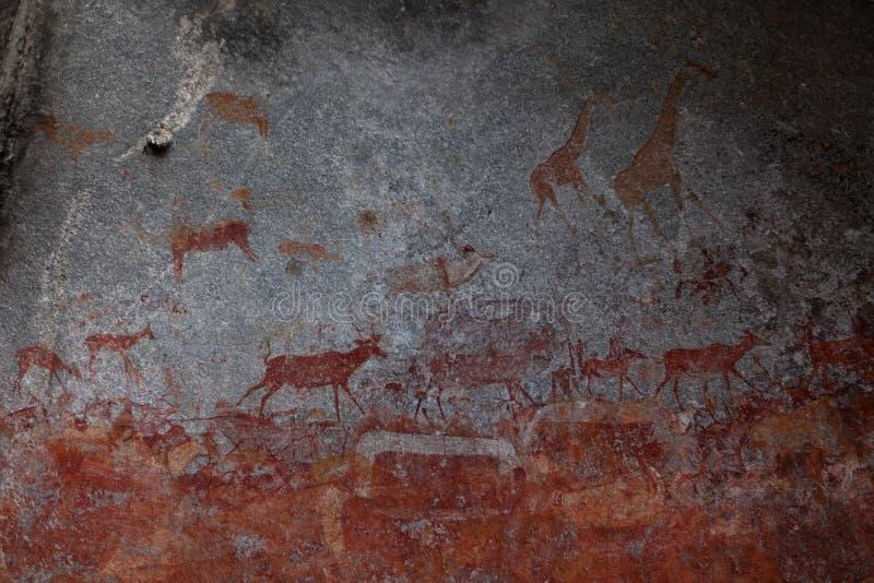 Pinturas de la roca en el parque nacional de Nswatugi en Zimbabwe fotografía de archivo