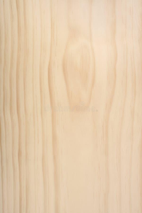 Pinus de madera no tratado descubierto Radiata fotos de archivo libres de regalías