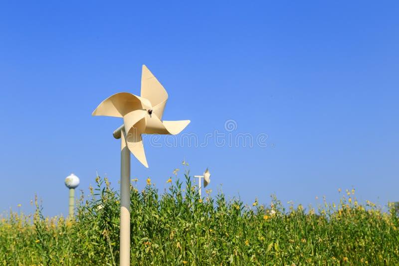 Pinwheel в поле стоковые изображения rf