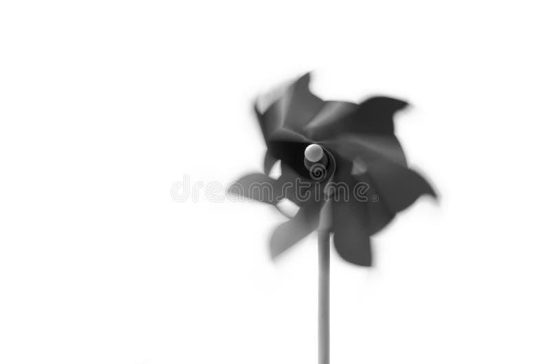 Pinwheel в черно-белом стоковые изображения rf