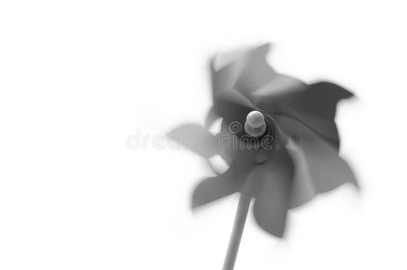 Pinwheel в черно-белом стоковые фото