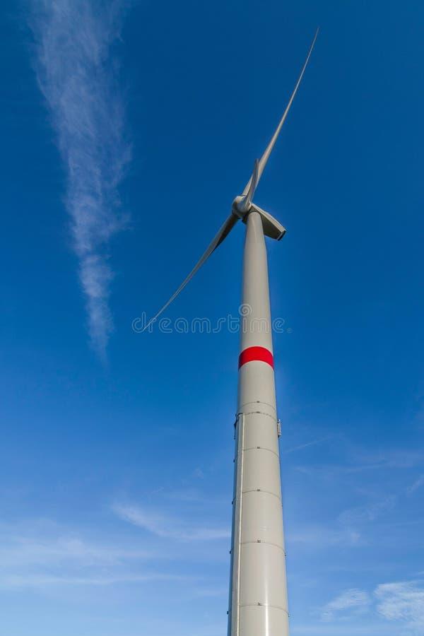 pinwheel stockfotos
