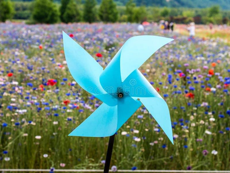Pinwheel azul imagem de stock