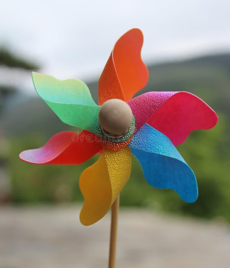 Pinwheel stock photos