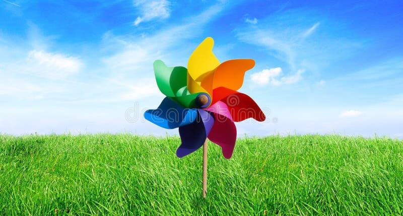 Pinwheel del prado en el viento imagenes de archivo
