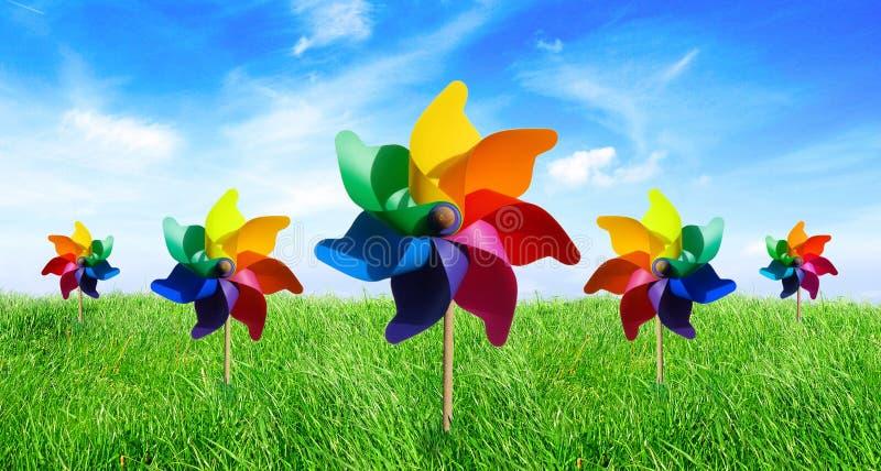Pinwheel do prado no vento fotografia de stock royalty free